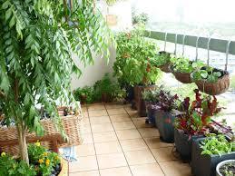 balcony garden design ideas india u2013 sixprit decorps