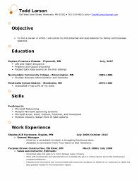 Sales Manager Resume Objective  territory sales manager job     happytom co Resume Objective For Marketing Best Resume Objective Examples For       sales manager resume