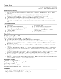 Professional Surety Underwriting Assistant III Templates to     My Perfect Resume