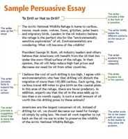 college experience essay sample