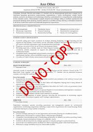 Accountant Resume Objective  personal banker resume sample      CV Examples   accountant resume objective