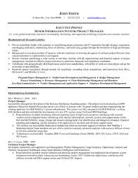 Technical Project Manager Resume Sample happytom co