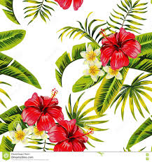 Flowers Plants by Tropical Flowers And Plants Pattern Stock Vector Image 74218175