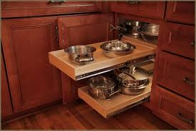 Kitchen Cabinets With Pull Out Shelves by Kitchen Cabinet Pull Out Shelves Hardware Home Design Ideas