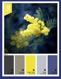contrasting color palettes page 11 of 55 color palette ideas