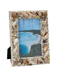 buy seashells online seashells for home decoration the