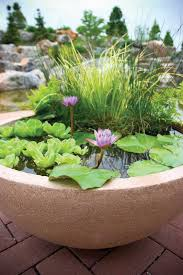 best 25 patio pond ideas on pinterest small garden ponds