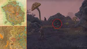 Morrowind Map Eso Morrowind Lost Library Quest Ancestor Spirit Answers