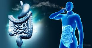 cannabis can affect the digestive system in both ways