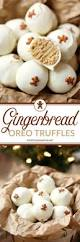 family dollar thanksgiving hours 17 best images about holiday christmas on pinterest christmas