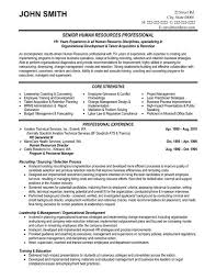 Premade Resumes Career Objective Examples For Banking Resume