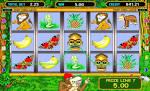 Популярный автомат Crazy Monkey
