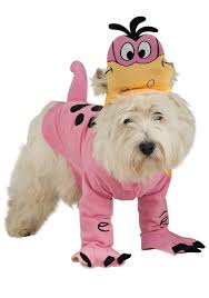 Dog Costumes Halloween 69 Dog Halloween Costumes Images Pet Costumes