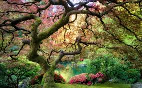 top 10 most beautiful gardens in the world youtube 13 of the most