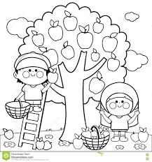 children harvesting apples coloring book page stock vector image