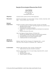 powerful resume objective statements   Template   opening statement on resume