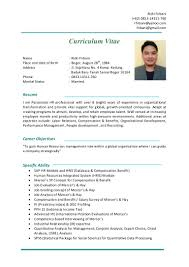 Best It Resume Sample by Cv Rizki Firbani Nov 2015