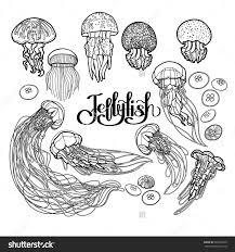 jellyfish drawn in line art style vector ocean animals in black