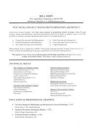 Best It Resume Sample by It Job Resume Sample