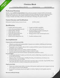 Executive Level Information Technology Resume