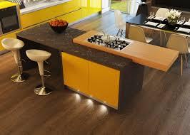 Stove In Kitchen Island Kitchen Island With Stove Interior Design Ideas