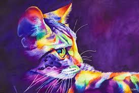 El lenguaje corporal del gato Images?q=tbn:ANd9GcTJGv9IOBikYbEQ5pY2ngAQsNzUtorN4vo3IaPgrOCpbaf-R9PG_Q