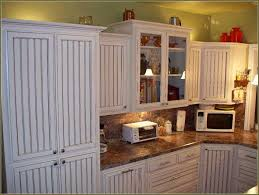 Kitchen Cabinet Doors Replacement Diy Kitchen Cabinet Doors Designs Cofisem Co
