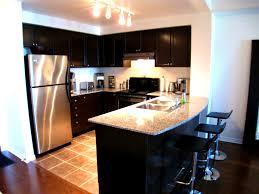 apartments attractive condo designs kitchens decor elegant