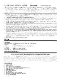 Ecommerce Resume Sample by Seo Expert Resume