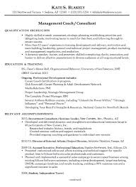 Sample Resume For Travel Consultant Travel Resume Template Resume     Pinterest