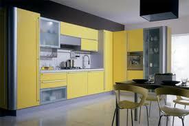Built In Kitchen Cabinets Built In Kitchen Cupboards Luxury Home Design