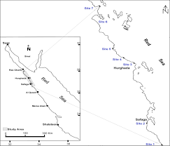 Map Of The Red Sea Removal Of Heavy Metals From Aqueous Solutions Using Multi Metals
