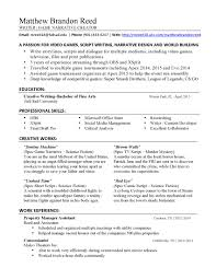 Video Editing Resume  basic cover letter format  resume template