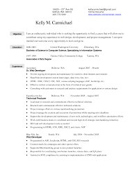 Sample Resume Objectives For Web Developer by Merchandiser Resume Objective Free Resume Example And Writing