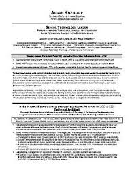 Executive Resume  amp  Professional Resume Samples sample sales resume   after