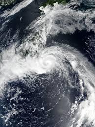 Typhoon Jongdari