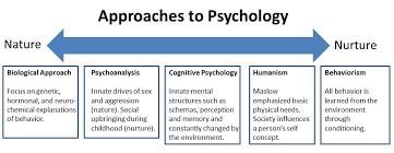 Psychology     s    Greatest Case Studies     Digested     Research Digest Case Study Design  Definition  Advantages  amp  Disadvantages   Video  amp  Lesson Transcript   Study com