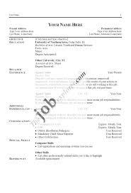 Pdf Resume Builder Professional Resume Format Download Pdf