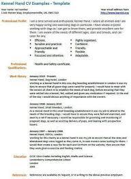 Academic CV template  Curriculum vitae  academic cvs  student     Yumpu