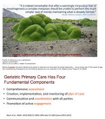 Gene Environment Case Control Studies Raymond J  Carroll     SlidePlayer