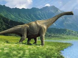 Dinosaurs Images?q=tbn:ANd9GcTMoOtAUEyMqk-dmJwjdKns3LAIQTC2XsCsu-KQnVpdc-evK3S2&t=1