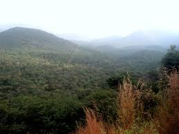 Malai Mahadeshwara Wildlife Sanctuary