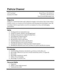 Student Resume Examples First Job by High Student Resume Templates No Work Experience 9 High