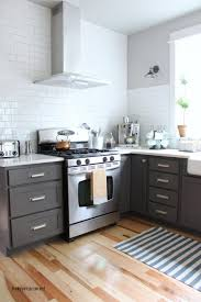 Reviews Of Ikea Kitchen Cabinets Painting Ikea Laminate Cabinets Ikea Grimslov Vs Bodbyn Sarah