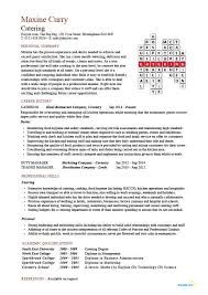 Resumes For Jobs Examples by Free Catering Cv Template Samples Catering Jobs Event Catering