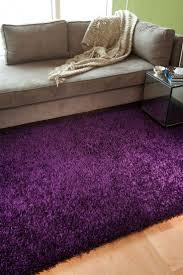 Lavender Rugs For Girls Bedrooms Best 20 Purple Shag Rug Ideas On Pinterest Purple Rugs Purple