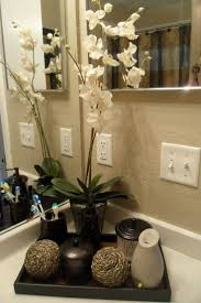 How To Make Small Bathroom Look Bigger Best 25 Small Elegant Bathroom Ideas On Pinterest Bath Powder