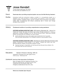 Architecture Resume Example   Resume Maker  Create professional