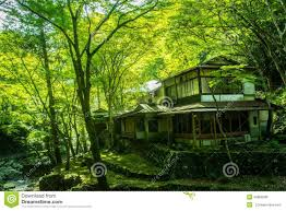 Japanese House Design by Old Japanese House In The Forest Stock Photo Image 45868285