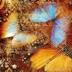 καλλιτεχνικές πεταλού&delt Στοκ Εικόνες - εικόνα: 12248304